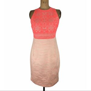 Hayden Embroidered and Tweed Coral Dress Size 8